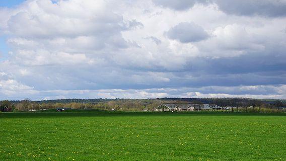 Zeddam -- Montferland