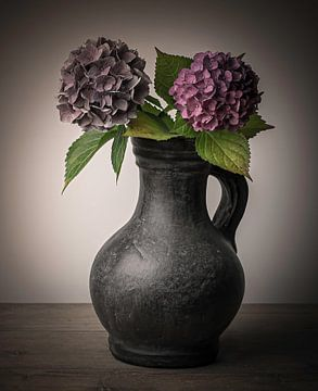 Stilleven hortensia in pot van Marjolein van Middelkoop