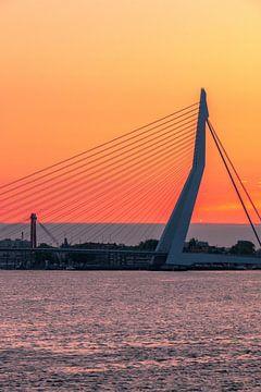 Erasmusbrug Rotterdam von AdV Photography