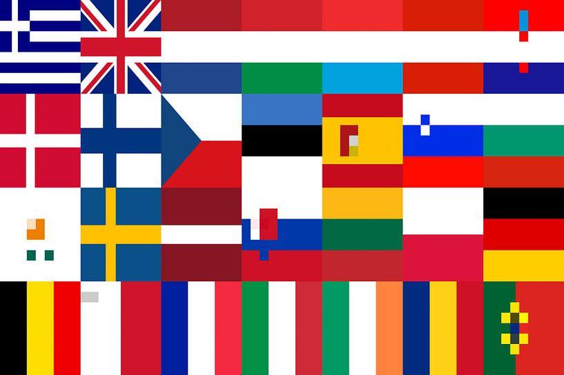 Vlaggen van de Unie 3: vereenvoudigd van Frans Blok