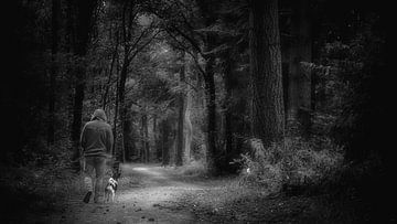 Forêt des contes de fées #5 sur Lex Schulte