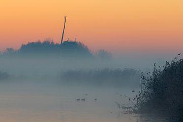 Koude en mistige ochtend van Cor de Bruijn