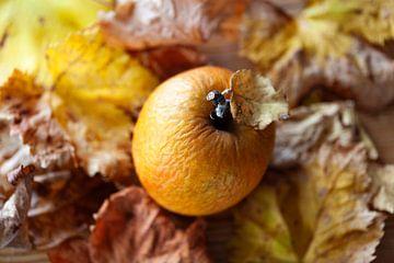 Gerimpelde appel en bladeren in herfstkleuren van Peter de Kievith Fotografie