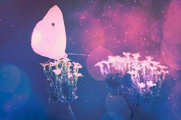 Sprookjesachtige vlinder van Erica Kuiper