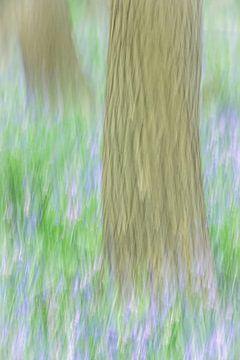 Impressionistisch bos