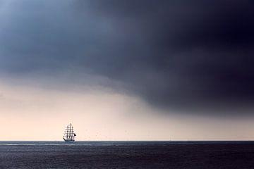 Den Sturm überlebt von Ton Drijfhamer