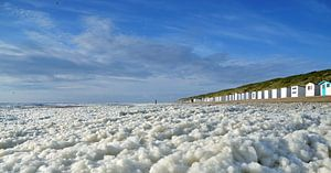 Schuim op het strand Texel