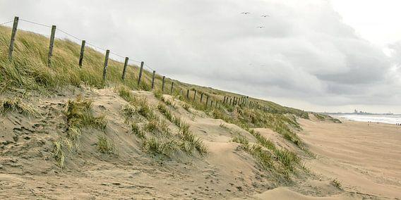duinen van katwijk