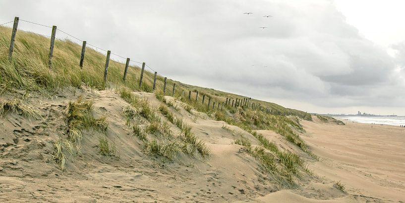duinen van katwijk van Dirk van Egmond