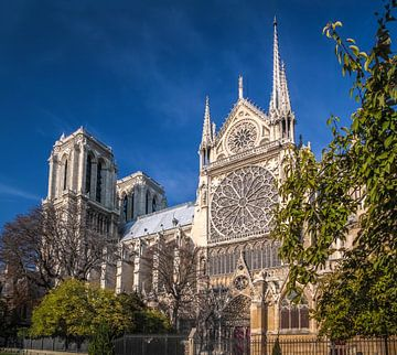 Kathedraal Notre Dame in Parijs van Christian Müringer