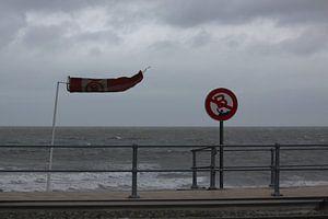Horizontale windzak