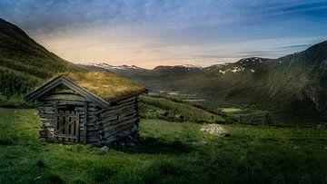 Noorse Sage van
