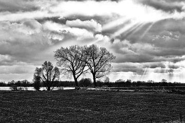 Landschap aan de Waal van J.P. Valentine