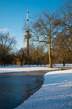 Der Euromast - Winter 2 von Nuance Beeld