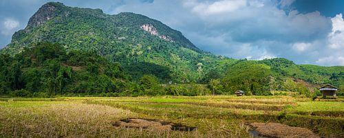 Panorama platteland Noord-Laos