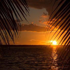 Zonsondergang tussen de palmbomen sur Michèle Huge