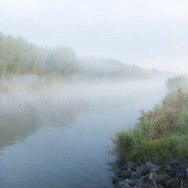 Een mistige ochtend langs de Leie in Kortrijk, Belgie van Krist Hooghe