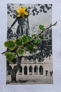 muurbloempje van Karin vanBijleveltFotografie