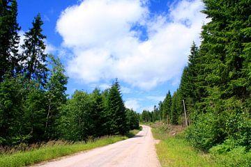 Onderweg in Zweden van Margreet Frowijn