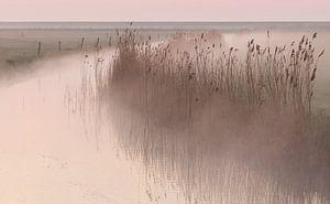 Ochtendmist in de polder van Art Wittingen