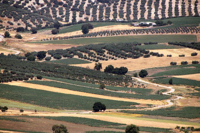 Lappendeken in Andalusië van jan katuin