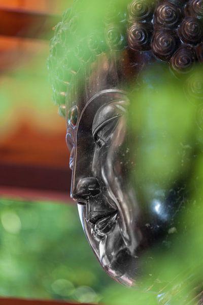 Hoofd van Buddha van Marcel Derweduwen