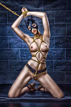 Catwoman Mask von Rod Meier