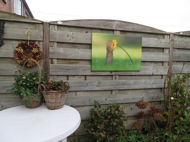 Photo de nos clients: L'écureuil sent la fleur sur Dick van Duijn, sur toile