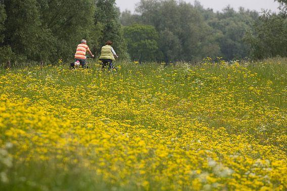 Mensen fietsen op de dijk langs begroeide