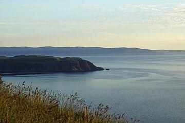 Landschaft bei Portree in Schottland von Babetts Bildergalerie