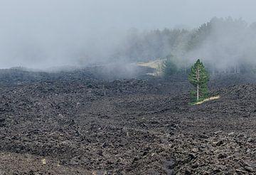 Etna 2 van Jurgen Hermse