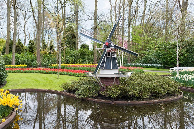 de keukenhof met een molen en velden vol tulpen van Compuinfoto .