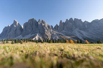 Geislergruppe im Herbst Dolomiten Villnöss Südtirol von Daniel Kogler