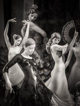 Flamenco von Alexander Voss