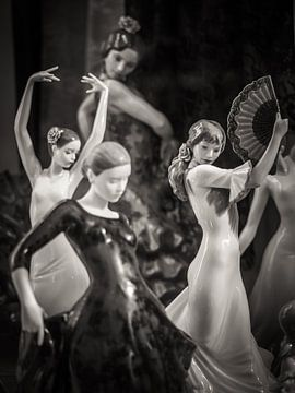 Flamenco sur Alexander Voss