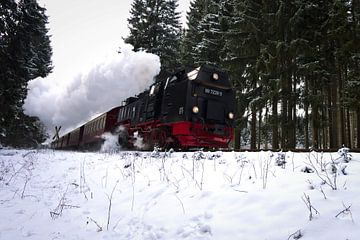 Ouderwetse locomotief in Duitsland von Leon Eikenaar