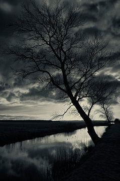 Tussen meer en bos (1) von Remco de Vries