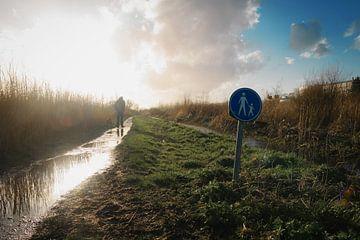 Wandelen door de polder van Paul Poot