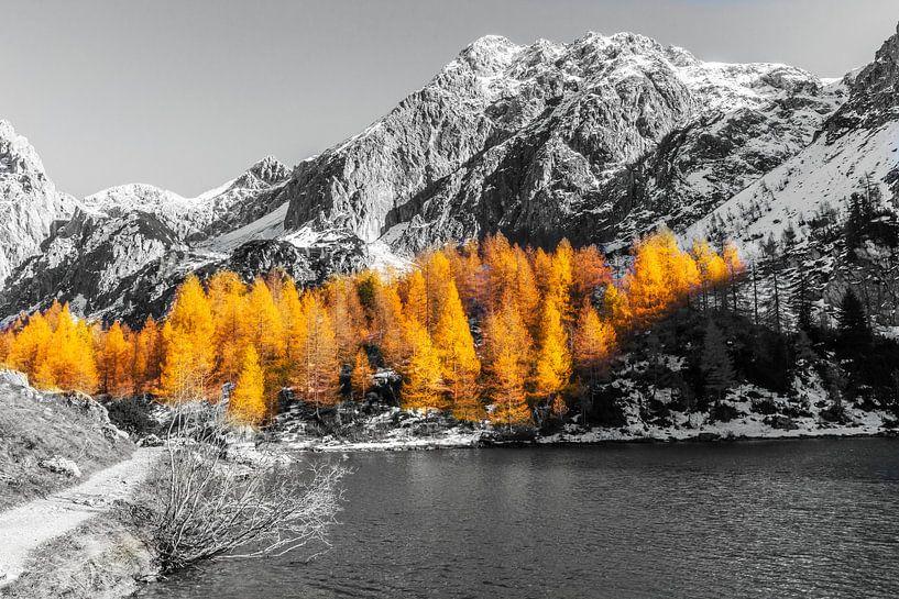 Herfst in de Bergen van Coen Weesjes