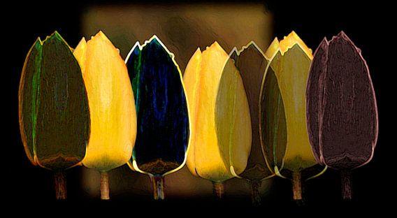 Gele en zwarte tulpen van Gerda H.