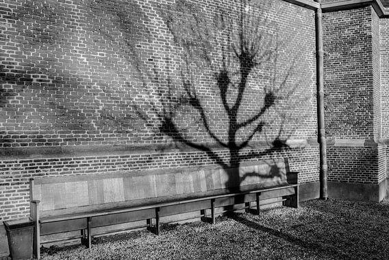 Ook een boom wil wel eens uitrusten. van Pieter van Roijen