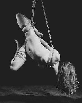Nackte Frau gefesselt in Bondage-Stil mit Seil. #K0486 von william langeveld