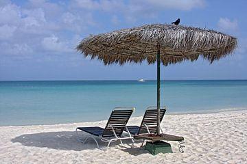 eagle beach, aruba van gea strucks