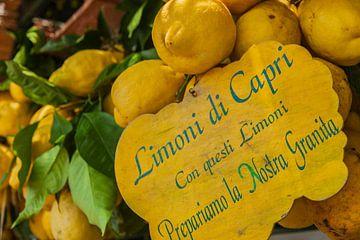 Citroenen van Capri van Tim van Breukelen
