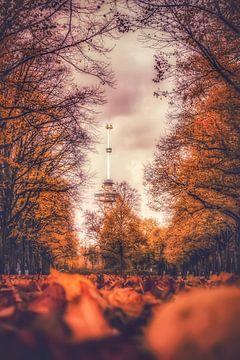 Parklaan Rotterdam von AdV Photography