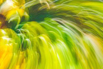 grünes Gras von Jan Peter Jansen