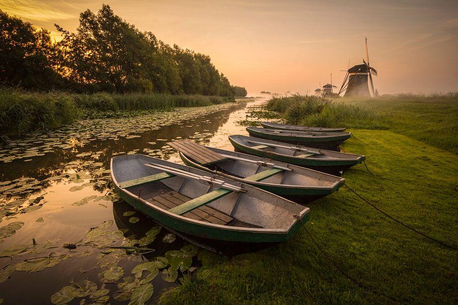Autumn Rising van Sander Meertins