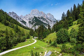 Gezicht op de Bindalm in het Berchtesgadener Land van Rico Ködder