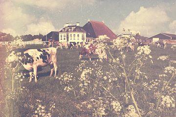Frieslandschap von Wolbert Erich