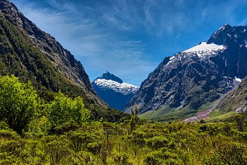 Vallei in Fiordland NP, Nieuw Zeeland van Rietje Bulthuis